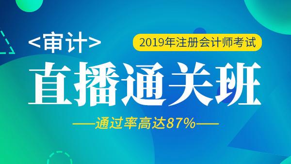 2019年注册会计师全程直播班-审计(38)